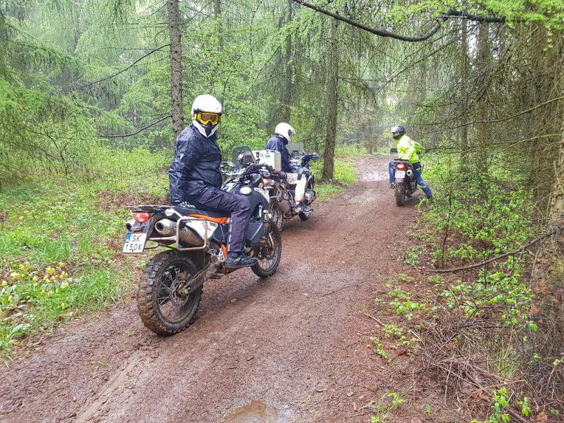 motocykle w lesie